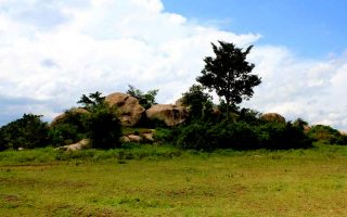 Nyero Rock Paintings
