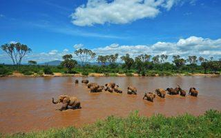 Samburu National Park / Reserve